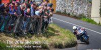 2016 Skerries 100